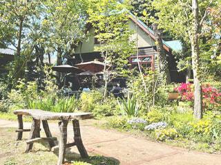 樹々に囲まれた古民家カフェの写真・画像素材[4327654]