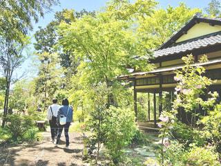 樹々に囲まれた古民家を散策の写真・画像素材[4327656]