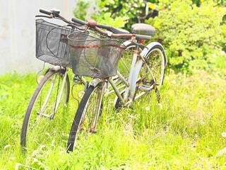 草むらに放置されて錆びた自転車の写真・画像素材[4360270]