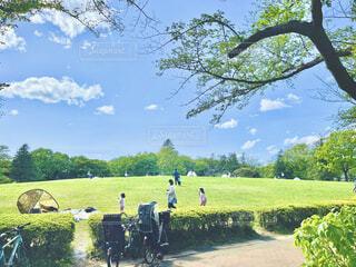 天気の良い芝生の丘の写真・画像素材[4367799]