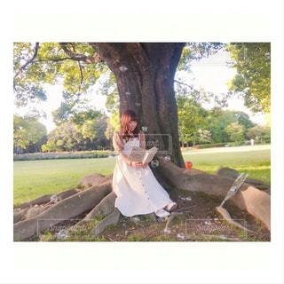 木陰でひとやすみの写真・画像素材[3069635]
