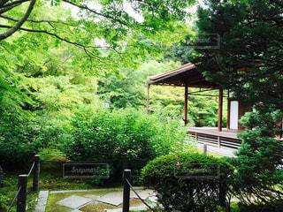 公園 - No.119511