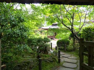 京都 - No.119527