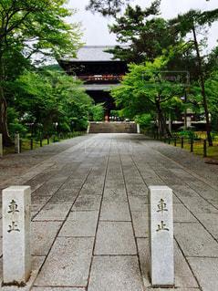 京都 - No.119534