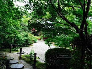 公園 - No.119536