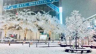 雪の町の写真・画像素材[1042010]