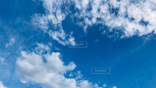 空の雲の群の写真・画像素材[3133770]