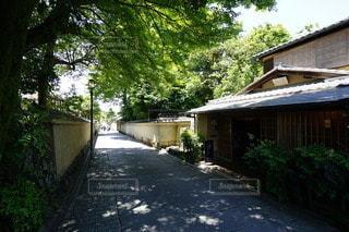 京都の街の写真・画像素材[3176158]