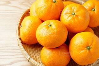 和歌山みかん 甘い 蜜柑の写真・画像素材[4682125]