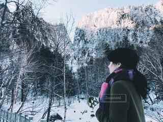 冬の旅の写真・画像素材[1009042]