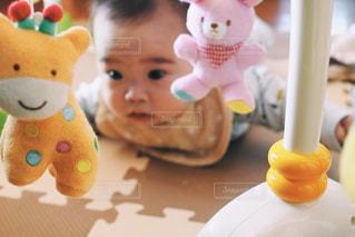 メリーで遊ぶ赤ちゃんの写真・画像素材[2332515]
