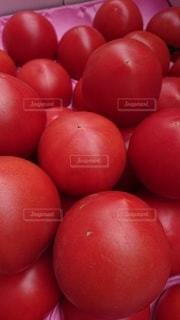 トマトの山積みの写真・画像素材[3203180]
