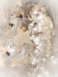 クリスマスの写真・画像素材[3679744]