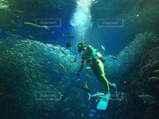水中ショットの写真・画像素材[3207965]