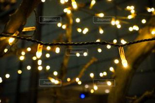 暖かい光の写真・画像素材[3099448]