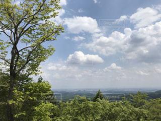 高尾山からの眺めの写真・画像素材[3087657]