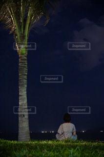 ベトナムの夜風の写真・画像素材[3097636]