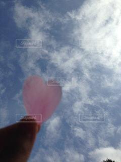 ハートの形の桜の花びらの写真・画像素材[3150970]