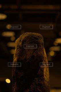 石人の写真・画像素材[3377824]