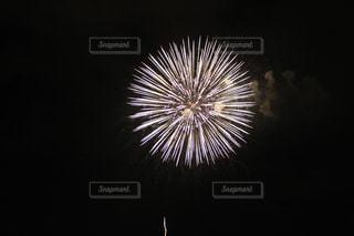 夏の写真・画像素材[215806]