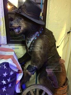 犬 - No.121429