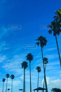 風景 - No.121689