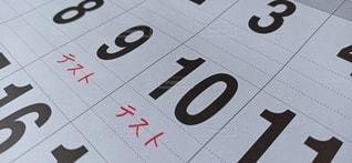 カレンダー(テスト)の写真・画像素材[3135483]