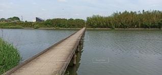沈下橋の写真・画像素材[3509806]