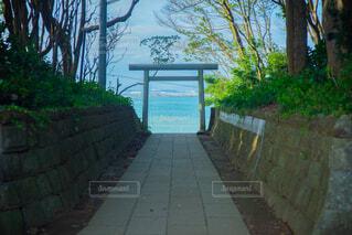 鳥居と海の写真・画像素材[4334690]