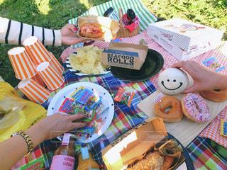 公園の芝生の上でピクニックの写真・画像素材[3171376]