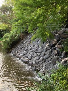 岩の隣の水の写真・画像素材[3109462]