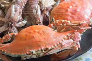 蒸し蟹の写真・画像素材[4412876]