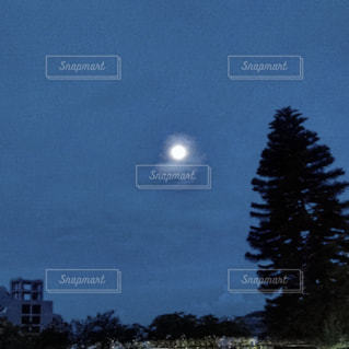 夜景の写真・画像素材[174972]