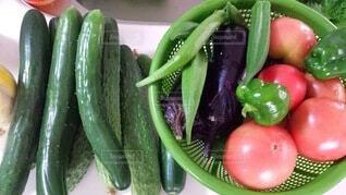 家庭菜園の野菜の写真・画像素材[3616238]