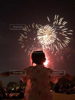 夜空の花火の写真・画像素材[3122790]