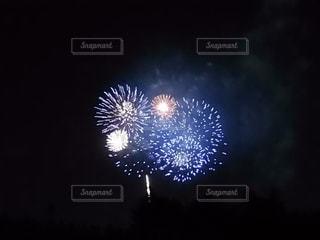 空の花火の写真・画像素材[3138519]