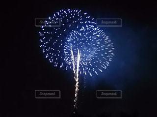 空の花火の写真・画像素材[3138520]