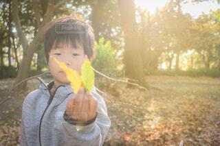 秋を見つけた!の写真・画像素材[3919715]