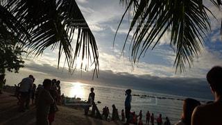 朝のフィリピン,オスロブの写真・画像素材[3128581]