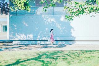 木漏れ日と女の子の写真・画像素材[3304907]