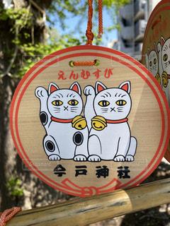 今戸神社 絵馬の写真・画像素材[3135430]