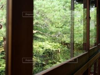 窓の外を見るビューの写真・画像素材[3396727]