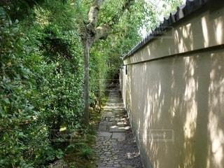 川に架かる石橋の写真・画像素材[3396729]