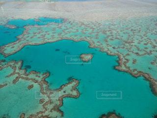 グレートバリアリーフ ハートのサンゴ礁の写真・画像素材[3144913]