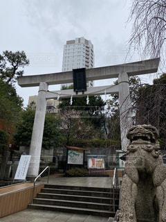 神社巡りの写真・画像素材[3145246]