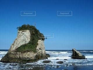 雀島の写真・画像素材[3173752]