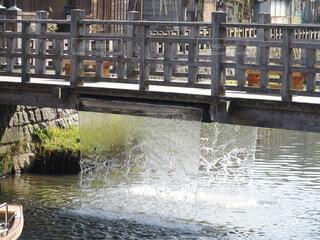 ジャージャー橋(3)の写真・画像素材[4673102]