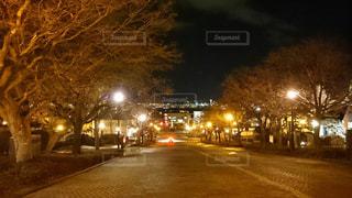 夜景の写真・画像素材[315025]
