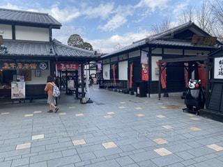 熊本城付近の写真・画像素材[3152810]