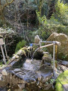 山の中にあった飲み水の写真・画像素材[3154793]
